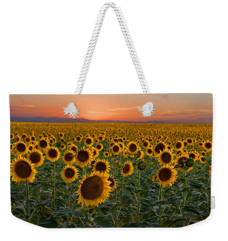 Sunflower Weekender Tote Bag featuring the photograph Standing At Attention by Ronda Kimbrow