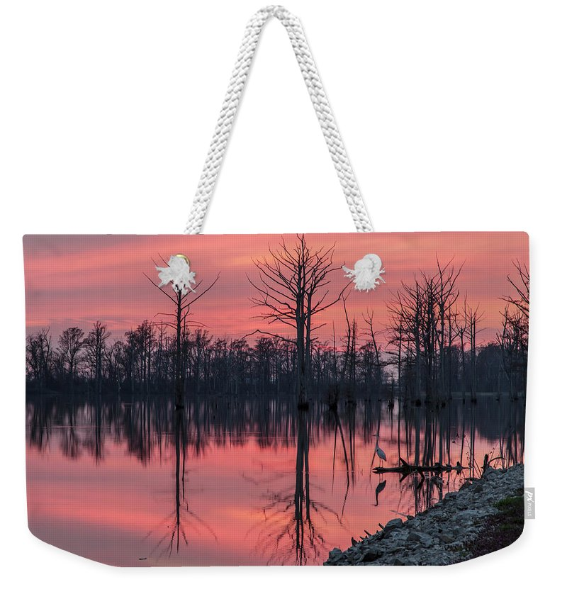 Outdoors Weekender Tote Bag featuring the photograph Standing Guard by Larrybraunphotography.com