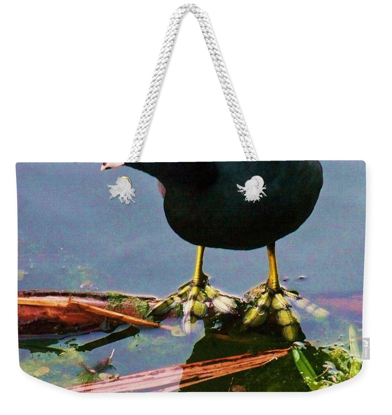 Water Weekender Tote Bag featuring the photograph Standing On Water by Chuck Hicks