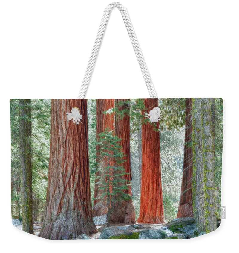 Hdr Weekender Tote Bag featuring the photograph Standing Tall - Sequoia National Park by Sandra Bronstein