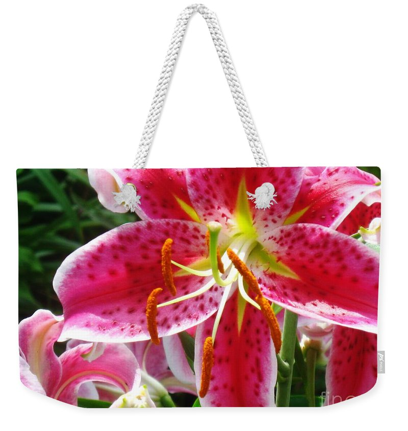 Star Gazer Lily Weekender Tote Bag featuring the photograph Star Gazer by Janell R Colburn