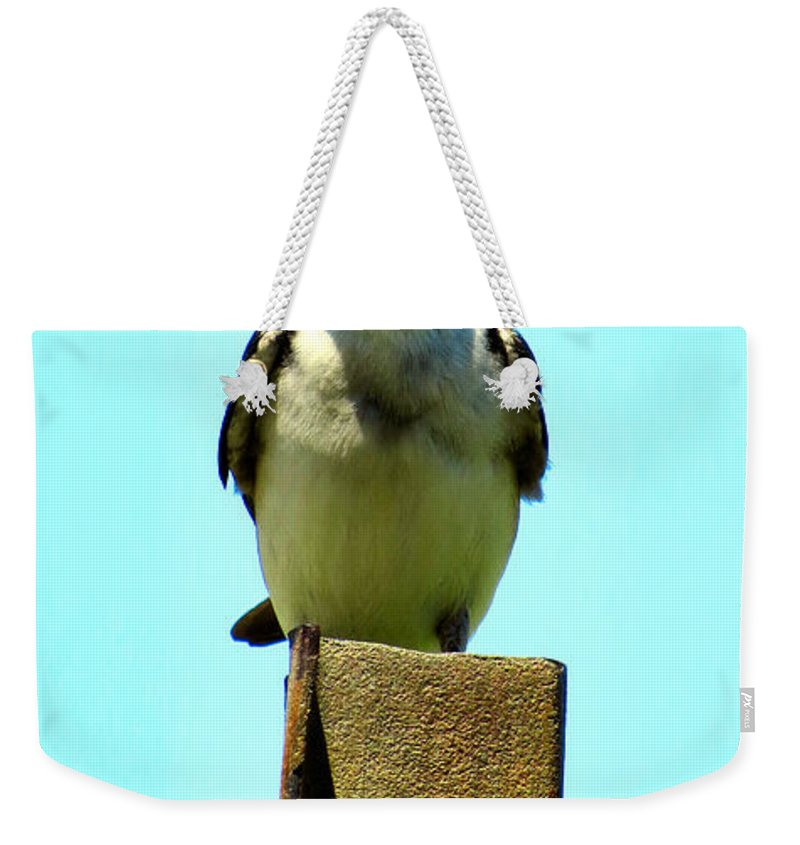 Tree Weekender Tote Bag featuring the photograph 1 Swallow Never Makes A Summer by Art Dingo