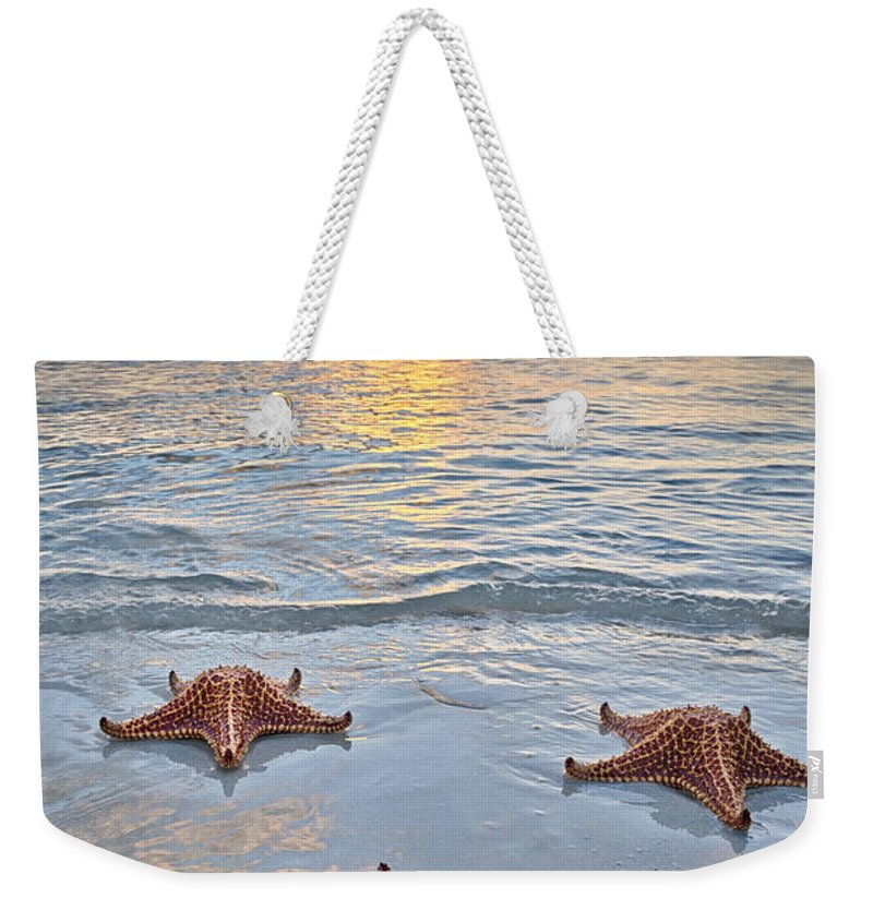 3scape Weekender Tote Bag featuring the photograph Starfish Beach Sunset by Adam Romanowicz