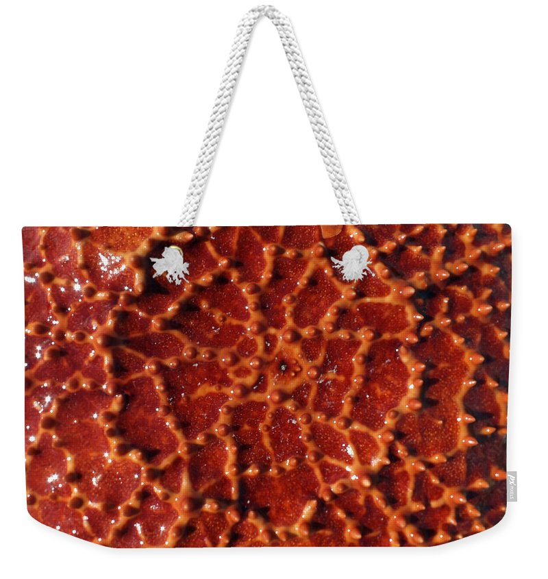 Duane Mccullough Weekender Tote Bag featuring the photograph Starfish Upclose Abstract by Duane McCullough