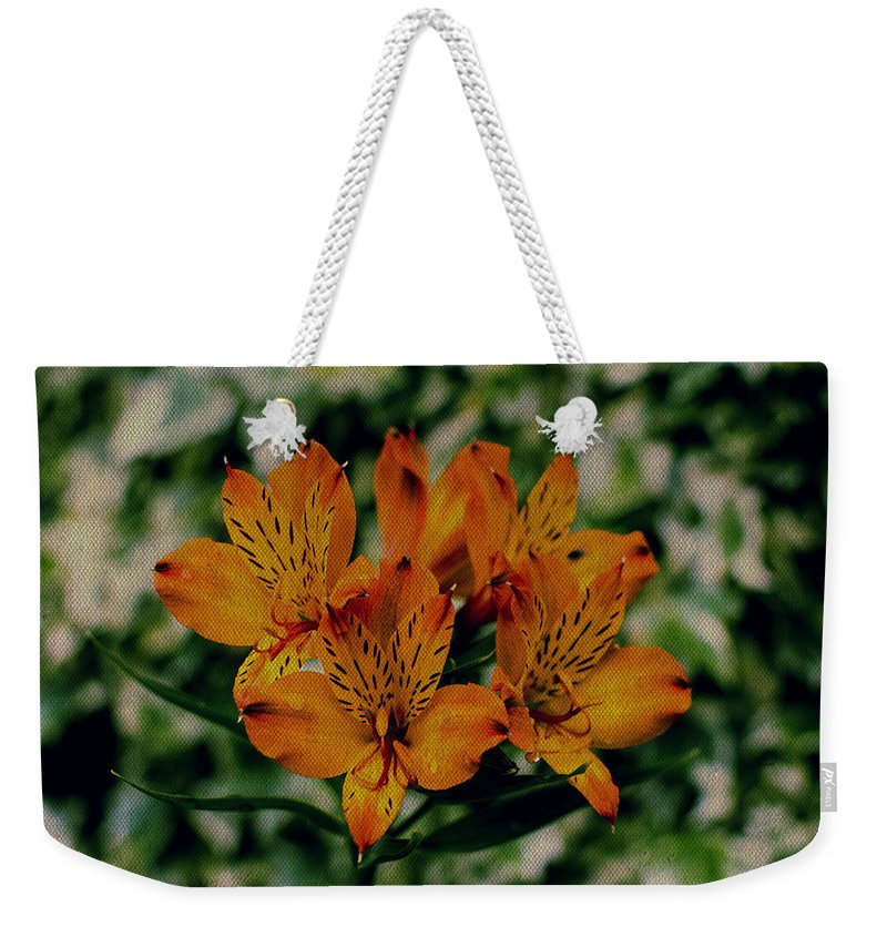 Stargazer On Paper Weekender Tote Bag featuring the photograph Stargazers by Marco Oliveira