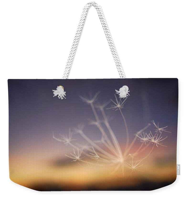 Stars Weekender Tote Bag featuring the photograph Stars At Night by Guido Montanes Castillo
