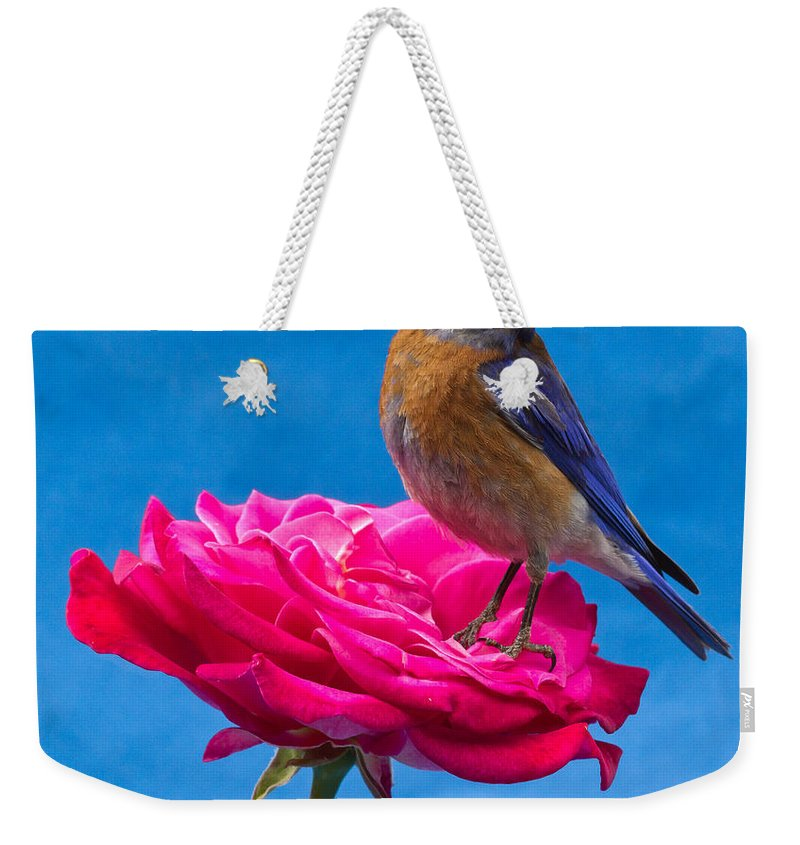 Animals Weekender Tote Bag featuring the photograph Steady by Jean Noren