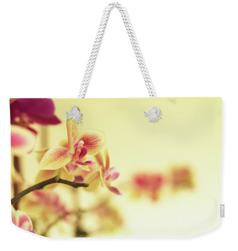 Purple Weekender Tote Bag featuring the photograph Stem Of Orchids by Jlph