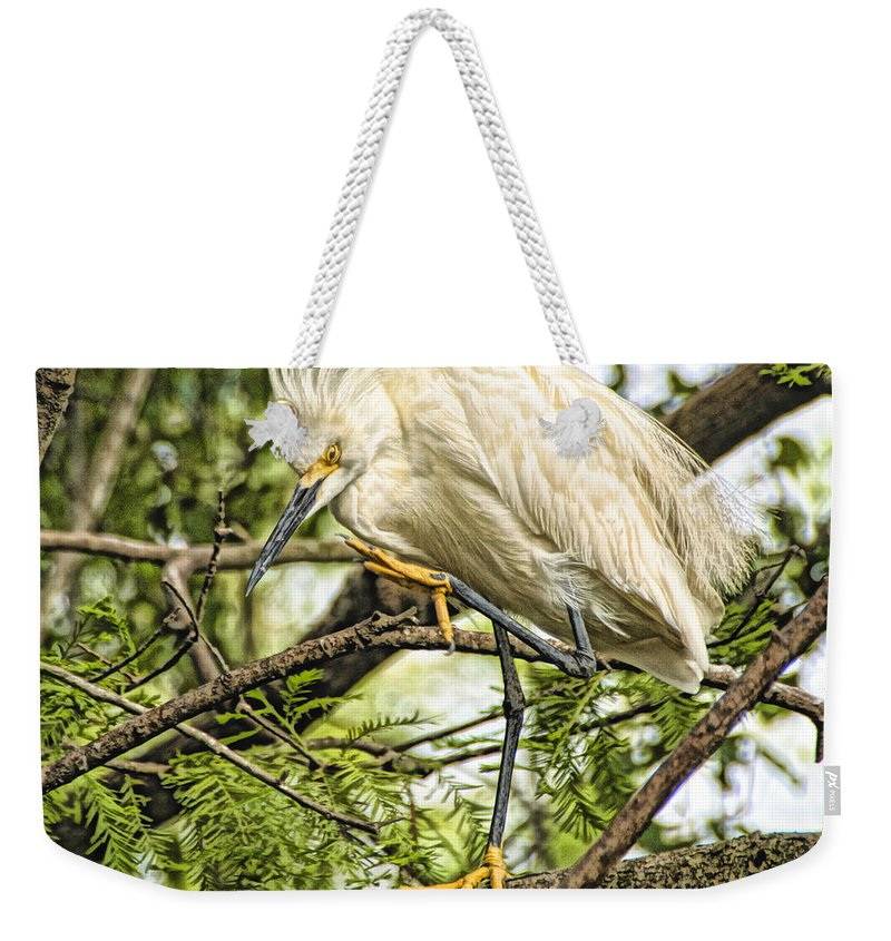 Snowy Egret Weekender Tote Bag featuring the photograph Stepping Out by James Ekstrom