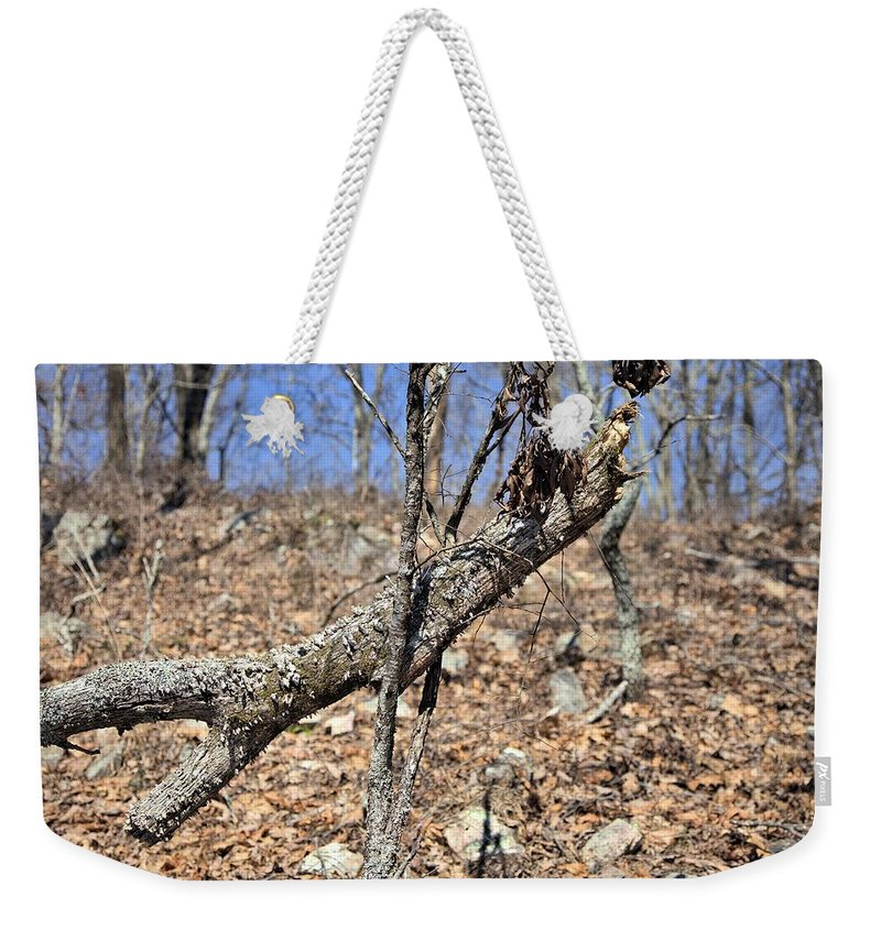 8113 Weekender Tote Bag featuring the photograph Sticks And Stones by Gordon Elwell