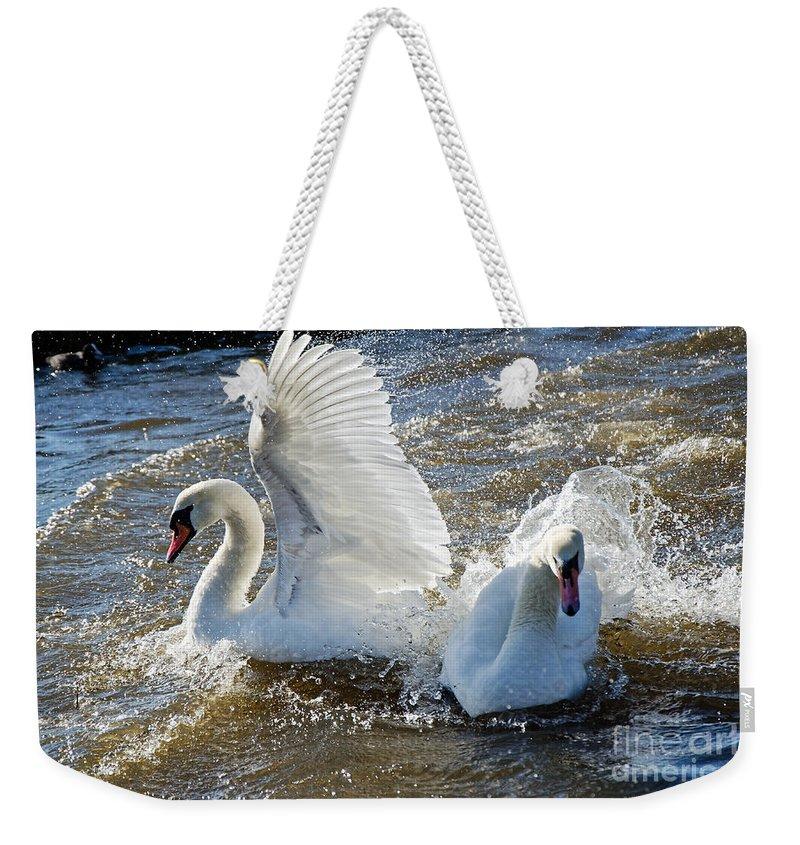 Mute Swans Weekender Tote Bag featuring the photograph Stop Splashing Me by Susie Peek