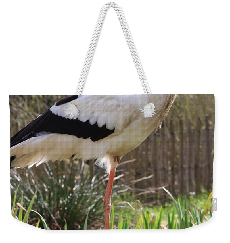 Stork Weekender Tote Bag featuring the photograph Stork by Christiane Schulze Art And Photography