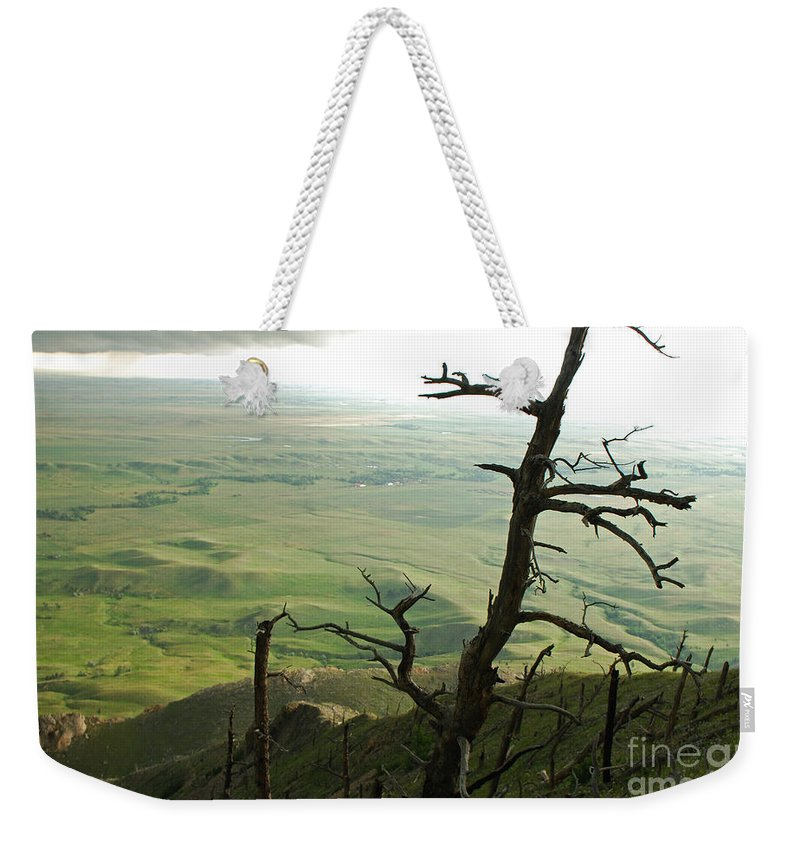Bear Butte Weekender Tote Bag featuring the photograph Stormy Tree by Mary Carol Story