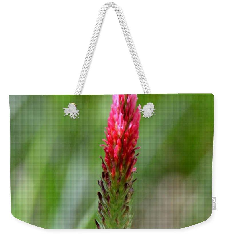 Strawberry Wildflower Weekender Tote Bag featuring the photograph Strawberry Wildflower by Maria Urso