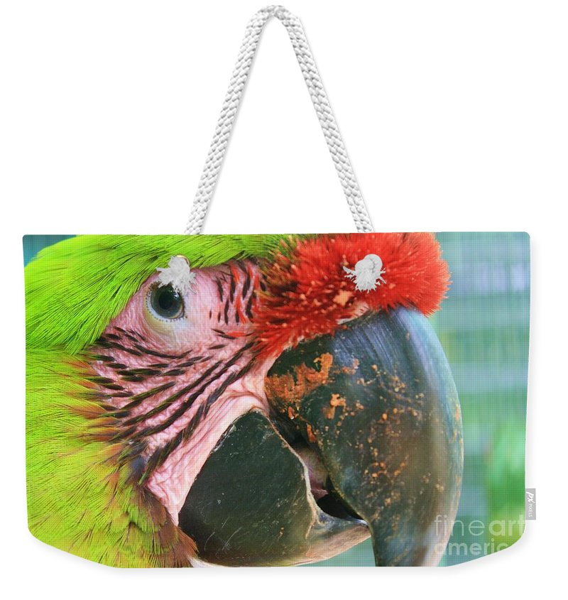 Parrot Weekender Tote Bag featuring the photograph Striped Eye by Chuck Hicks