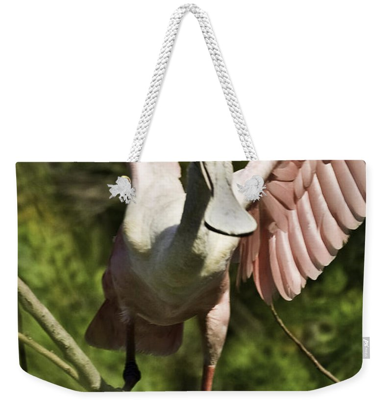 Roseate Weekender Tote Bag featuring the photograph Strutting - 3d by James Ekstrom