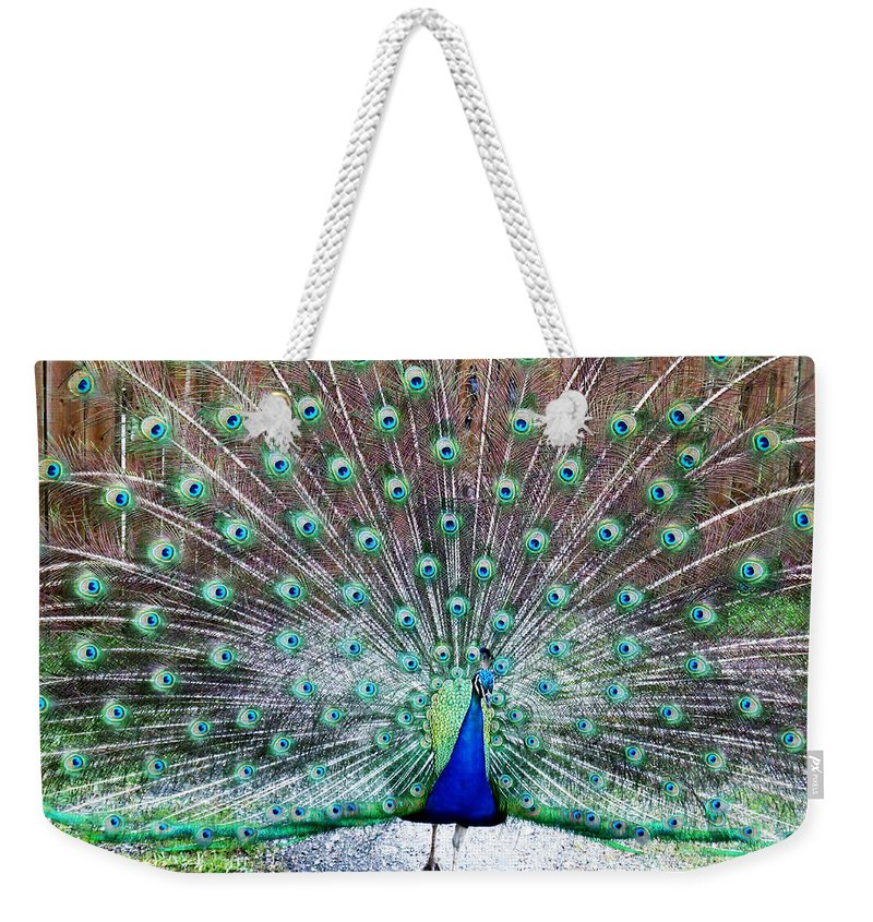 Peacock Weekender Tote Bag featuring the photograph Strutting by Sheryl Chapman Photography