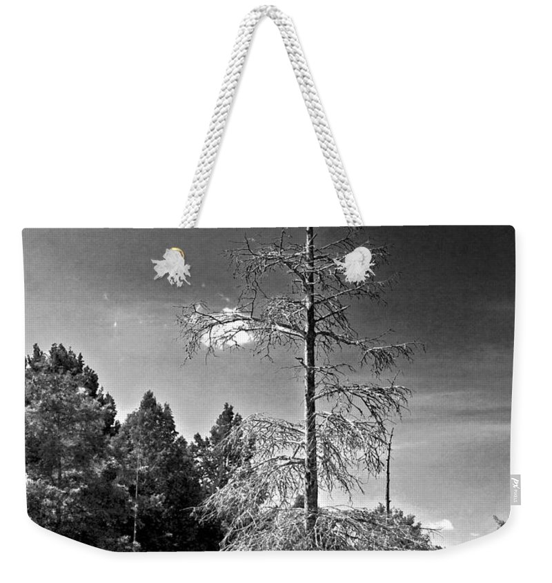 Vernon Lake Weekender Tote Bag featuring the photograph Stuck In The Middle  by Ken Frischkorn