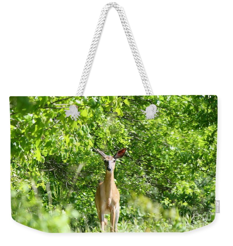 Wildlife Weekender Tote Bag featuring the photograph Stumble Upon by Neal Eslinger