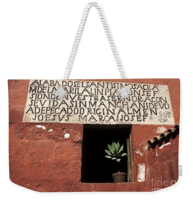 Peru Weekender Tote Bag featuring the photograph Succulent In Window by James Brunker