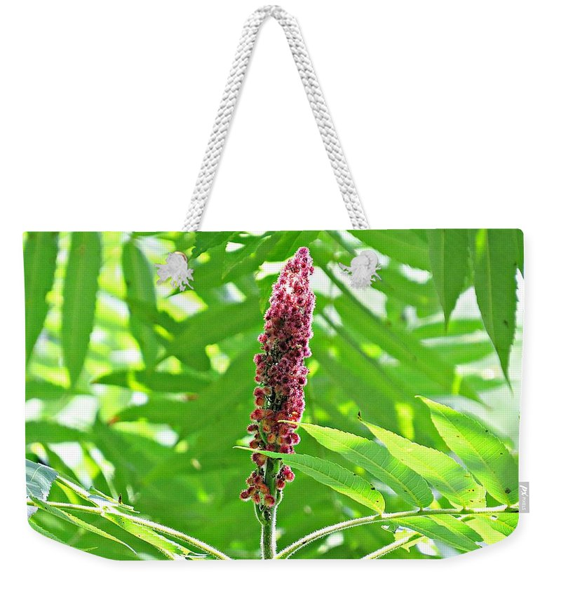 Sumac Weekender Tote Bag featuring the photograph Sumac by MTBobbins Photography