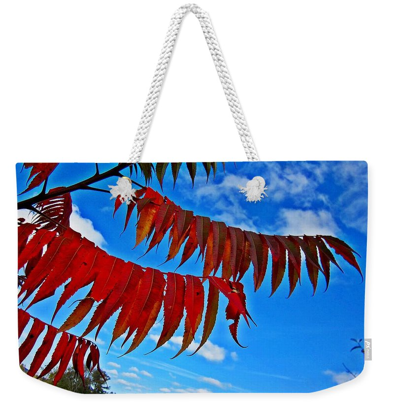 Field Weekender Tote Bag featuring the photograph Sumac Red by MTBobbins Photography