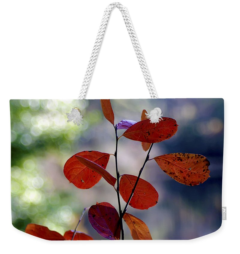 2d Weekender Tote Bag featuring the photograph Summer's End by Brian Wallace