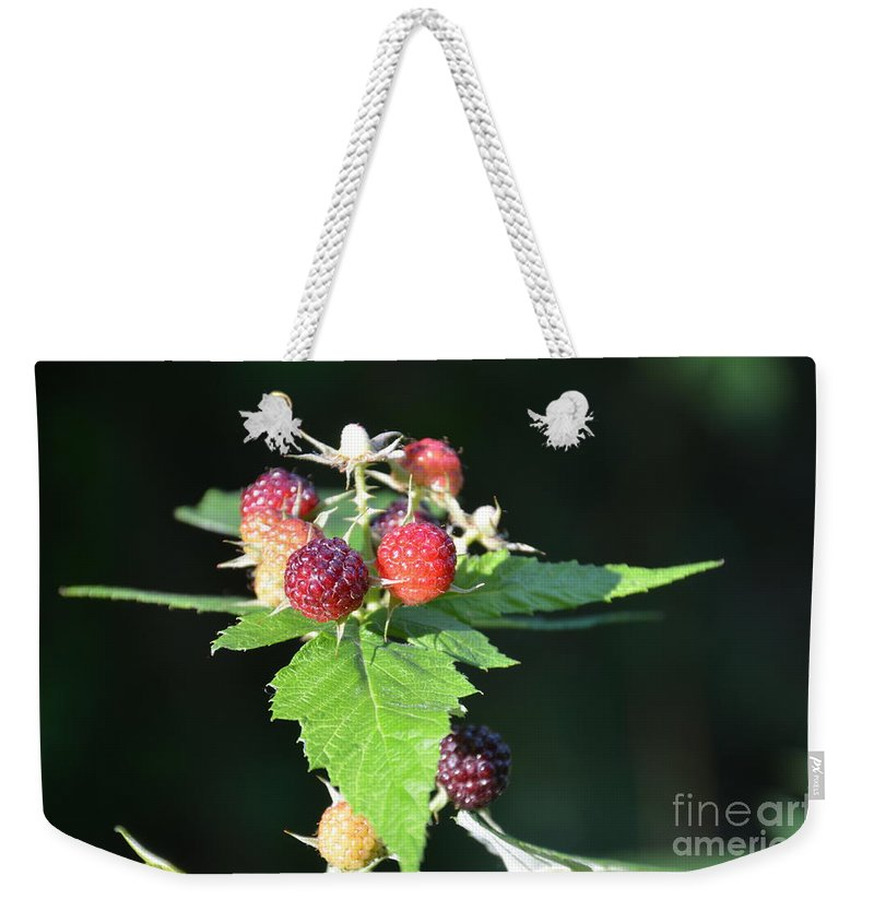 Raspberry Weekender Tote Bag featuring the photograph Summertime Goodness by Randy J Heath