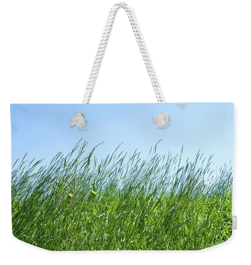 Tranquility Weekender Tote Bag featuring the photograph Summertime Grass And Blue Sky by Thomas Firak Photography