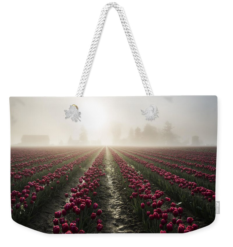 Tulips Weekender Tote Bag featuring the photograph Sun In Fog And Tulips by Yoshiki Nakamura