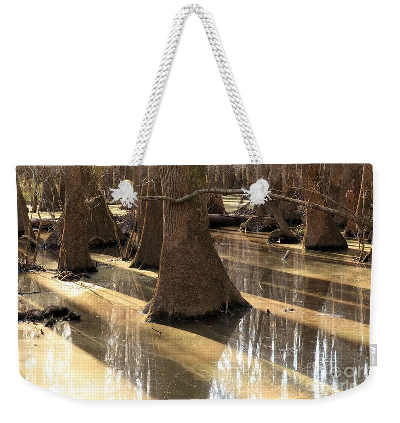 Congaree National Park Weekender Tote Bag featuring the photograph Sun Stripes by Adam Jewell