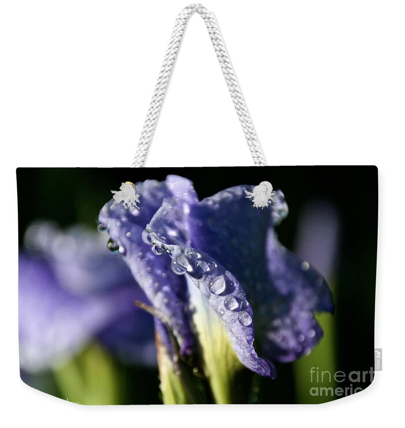 Flower Weekender Tote Bag featuring the photograph Sunbacked by Susan Herber