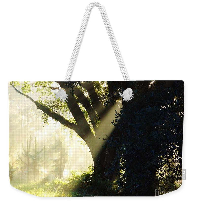 Sunshine Weekender Tote Bag featuring the photograph Sunbeam Tree by D Hackett