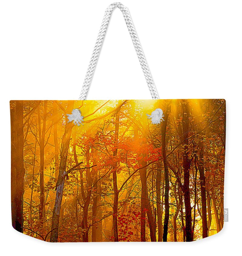 Sunburst Weekender Tote Bag featuring the photograph Sunburst In The Forest by Randall Branham