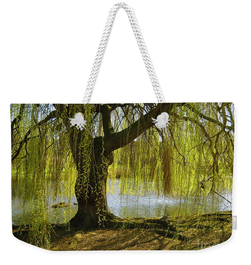 Tree Weekender Tote Bag featuring the photograph Sunday In The Park by Madeline Ellis