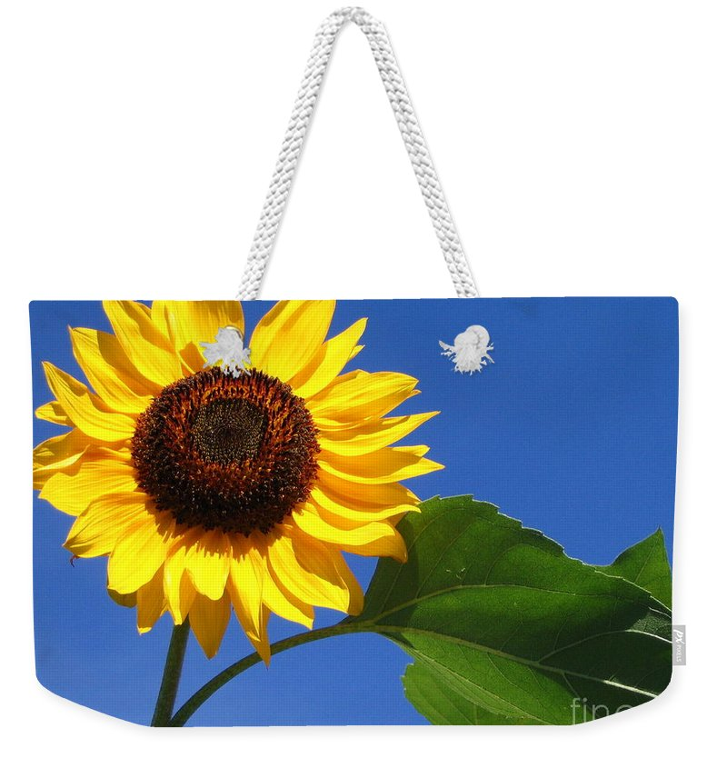 Sunflower Weekender Tote Bag featuring the photograph Sunflower Alone by Line Gagne