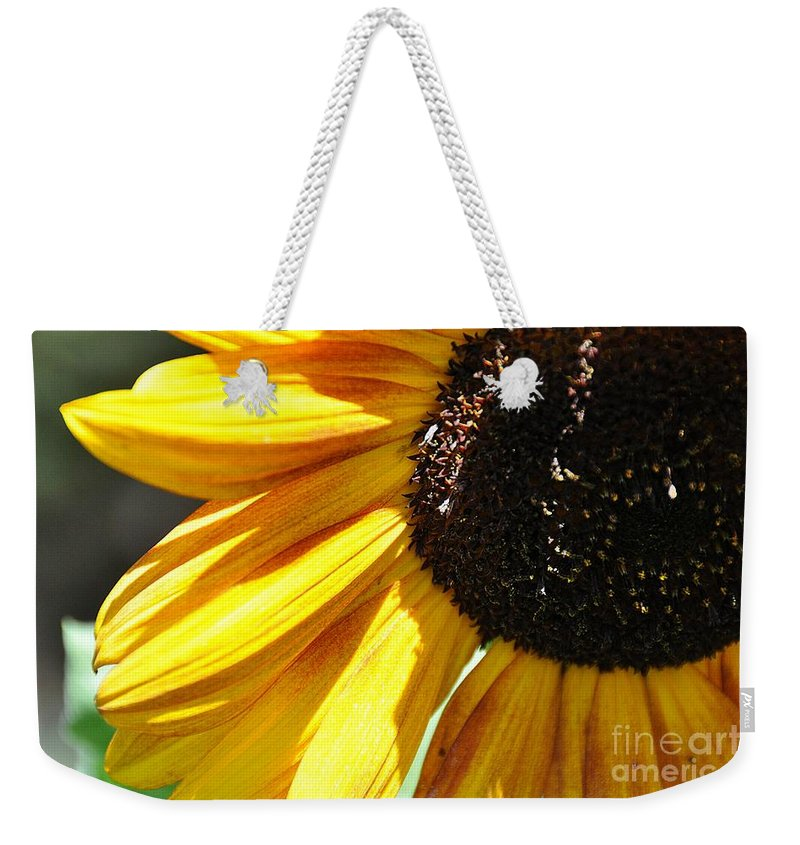 Weekender Tote Bag featuring the photograph Sunflower by Cheryl Baxter