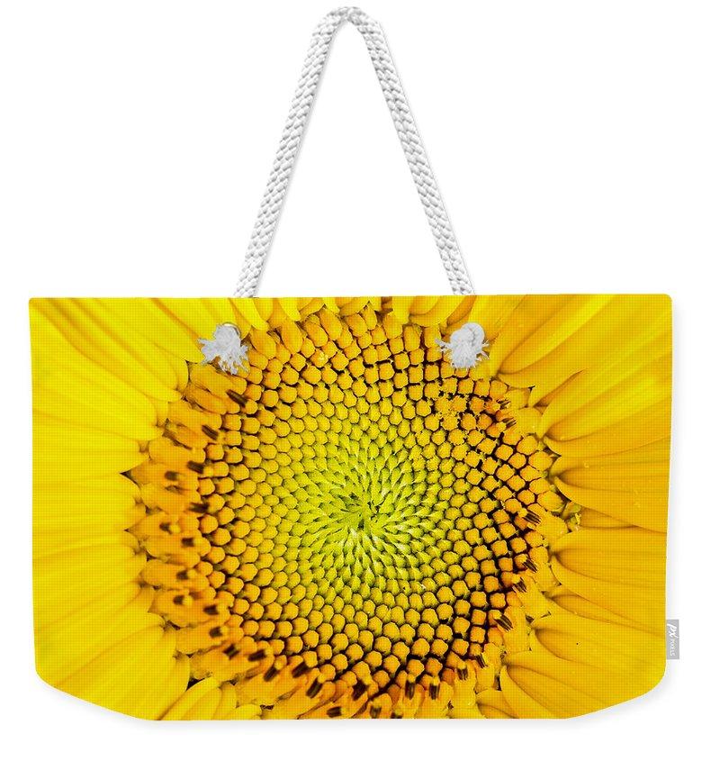 Sunflower Seeds Photographs Weekender Tote Bags
