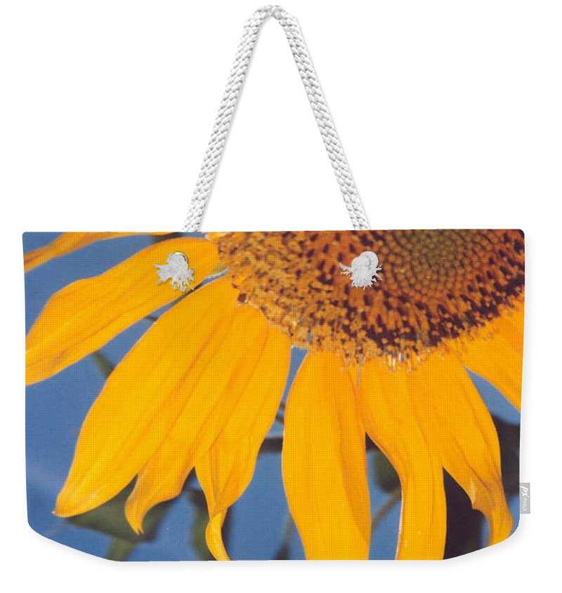 Flower Weekender Tote Bag featuring the photograph Sunflower In The Corner by Heather Kirk