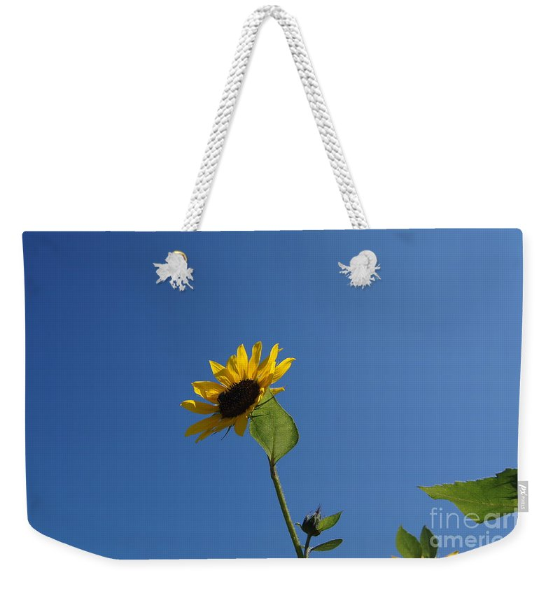 Sunflower With Blue Sky Weekender Tote Bag featuring the photograph Sunflower by Jeffery L Bowers