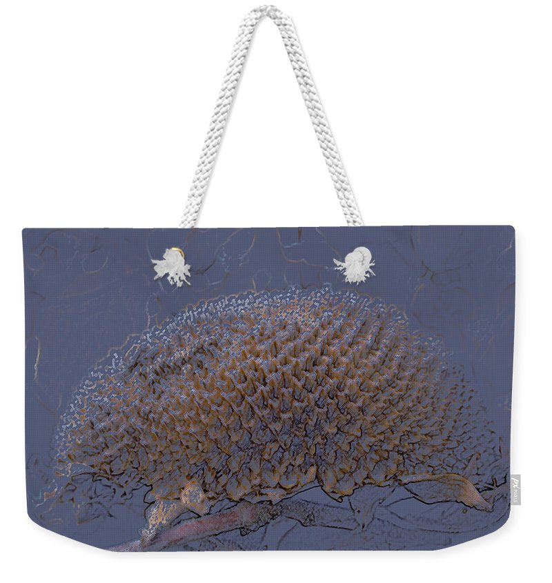Sunflower Weekender Tote Bag featuring the photograph Sunflower by Jo Smoley