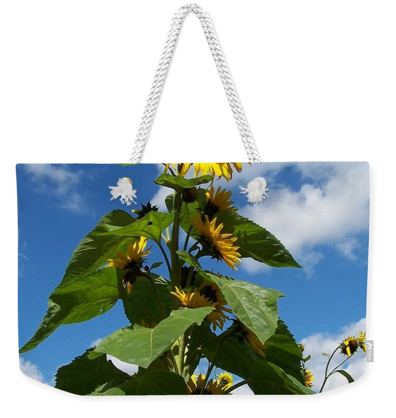 Sunflower Weekender Tote Bag featuring the photograph Sunflower Tall Beauty by Holly Eads