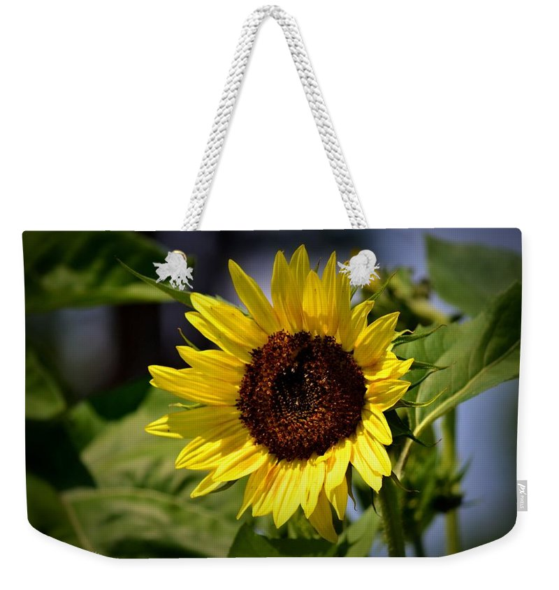 Sunflower Weekender Tote Bag featuring the photograph Sunflower by Tara Potts