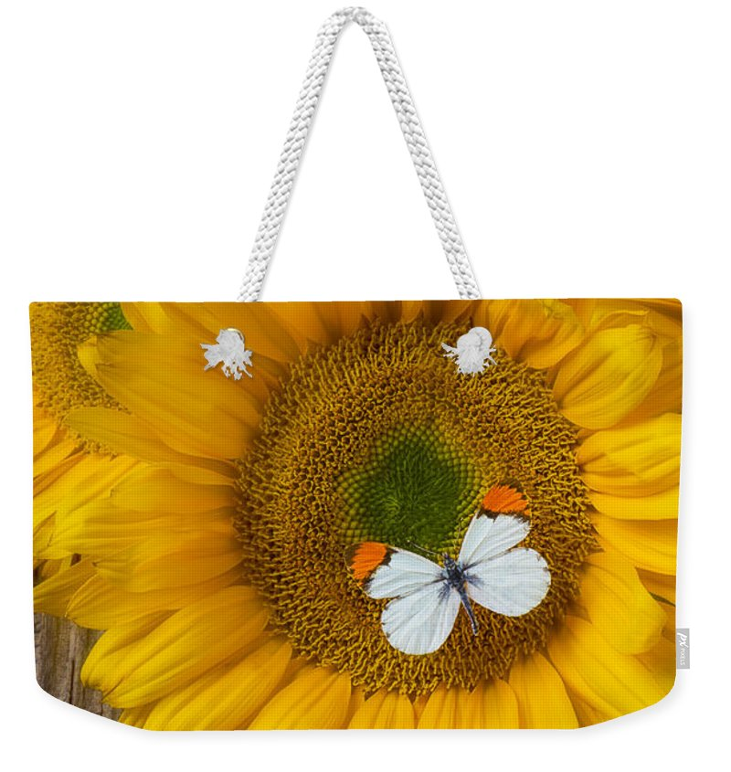 Our Weekender Tote Bag featuring the photograph Sunflower With White Butterfly by Garry Gay