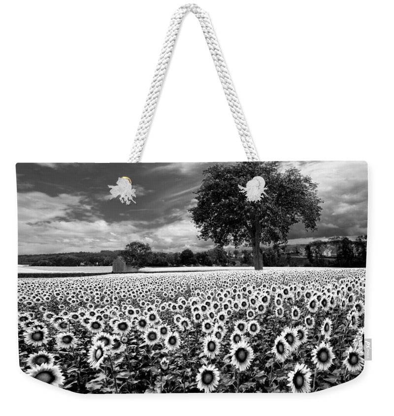 American Weekender Tote Bag featuring the photograph Sunflowers In Black And White by Debra and Dave Vanderlaan