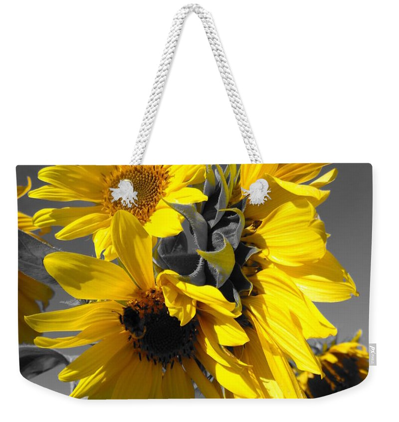 Flowers Weekender Tote Bag featuring the photograph Yellow Selected Sunflowers by Maili Page