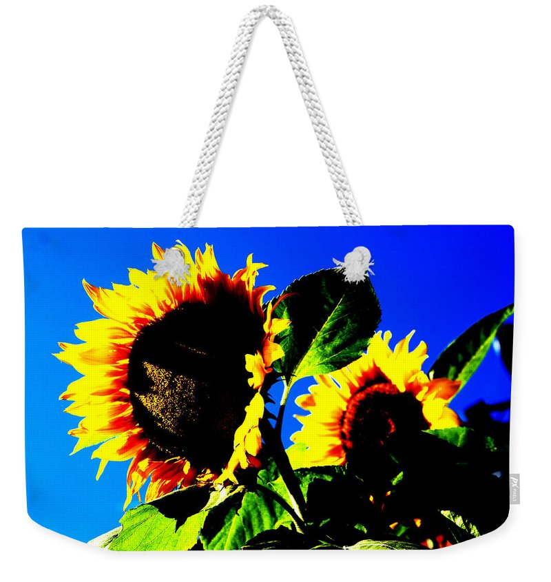 Sunflowers Weekender Tote Bag featuring the photograph Sunflowers by Peter Lloyd