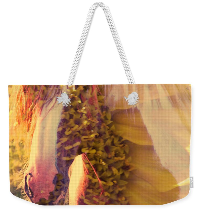 Horse Weekender Tote Bag featuring the photograph Sunhorse by Alice Gipson