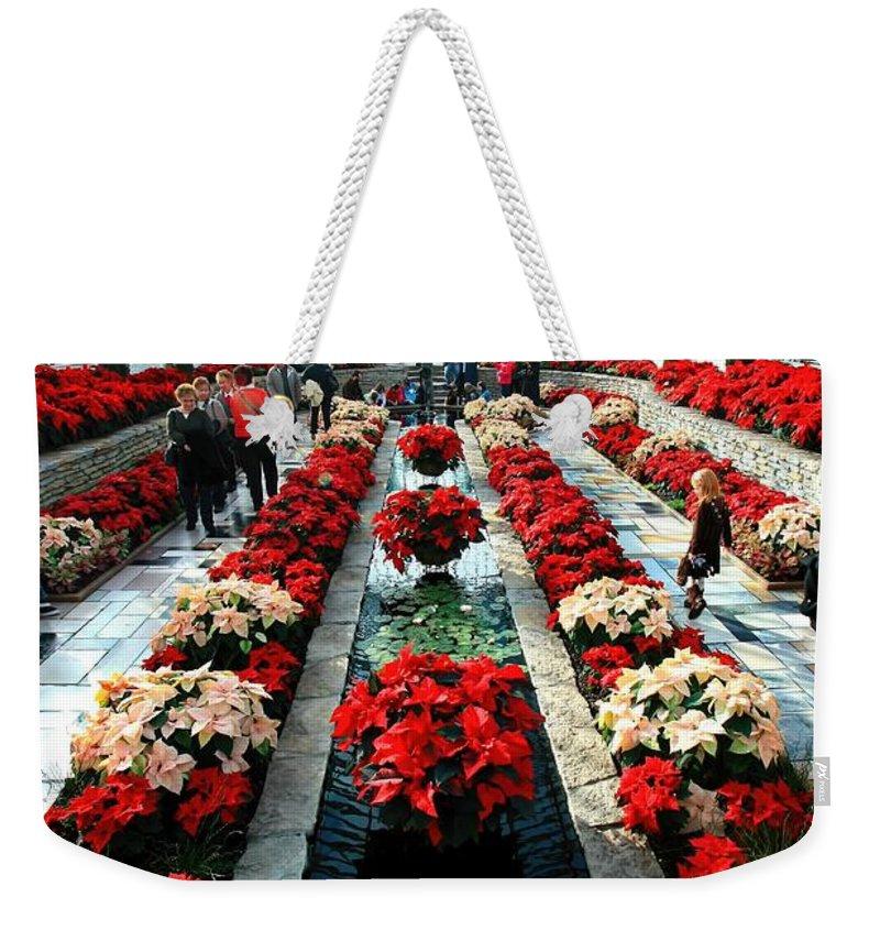 Sunken Garden Weekender Tote Bag featuring the photograph Sunken Garden Como Conservatory by Amanda Stadther
