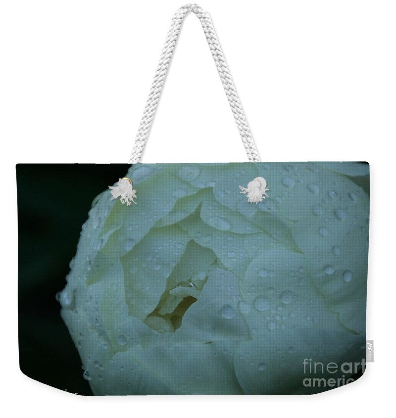 Flower Weekender Tote Bag featuring the photograph Sunless by Susan Herber